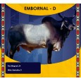 Dose de sêmen de touro da raça Guzerá - Embornal D