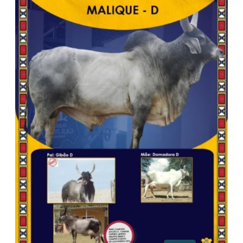 Dose de sêmen de touro da raça Guzerá - Malique D