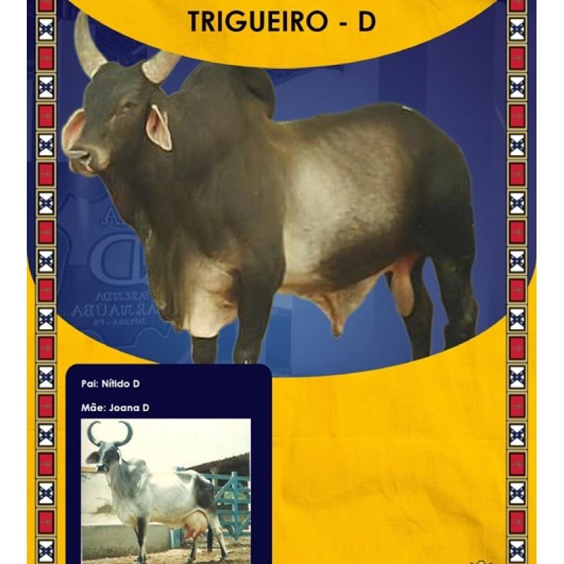 Dose de sêmen de touro da raça Guzerá - Trigueiro D
