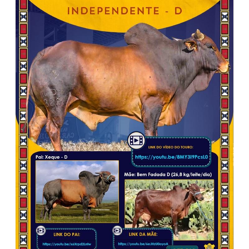 Dose de sêmen de touro da raça Sindi - Independente D