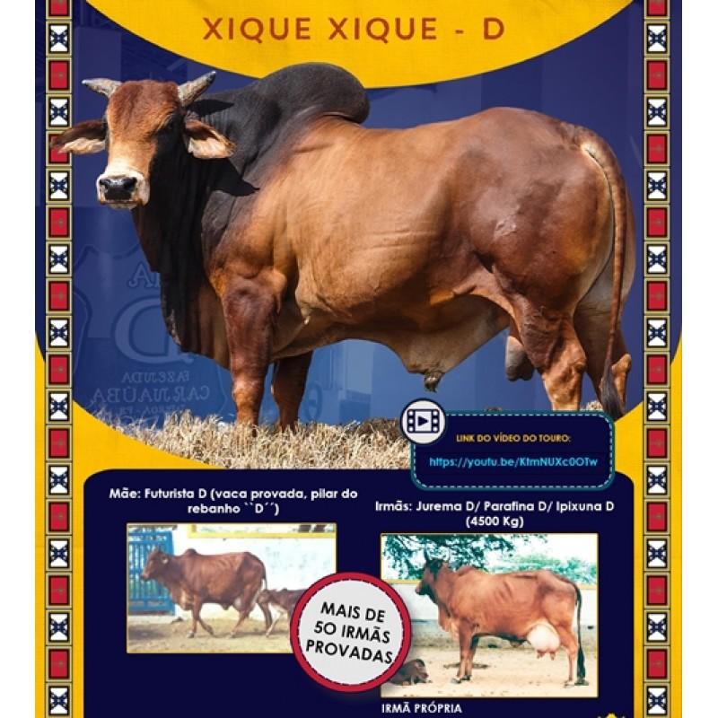 Dose de sêmen de touro da raça Sindi - Xique xique D
